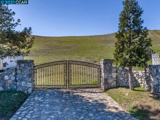10 Storybook Ln, Livermore, CA 94551 (#CC40939202) :: Intero Real Estate