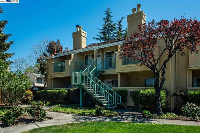 214 Sunnyhills Ct, Milpitas, CA 95035 (#BE40943625) :: Strock Real Estate