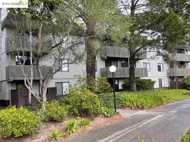 2144 Shelter Crk Lane, San Bruno, CA 94505 (#EB40944982) :: Strock Real Estate