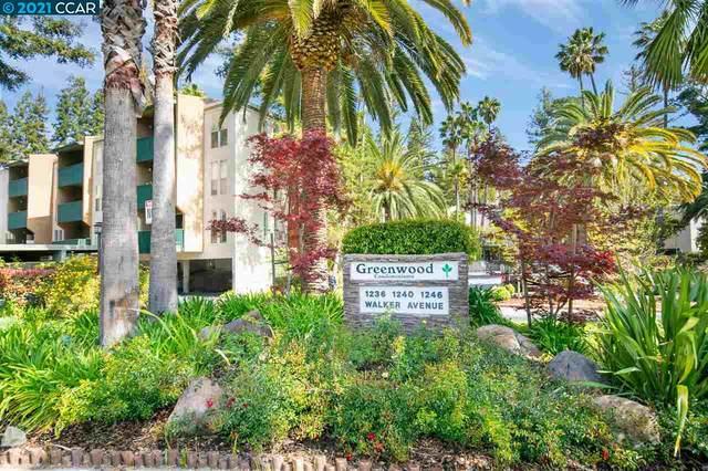 1236 Walker Ave 204, Walnut Creek, CA 94596 (#CC40945492) :: Schneider Estates