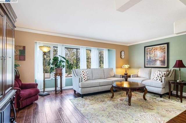 2046 Oak Creek Pl, Hayward, CA 94541 (#BE40945582) :: Intero Real Estate