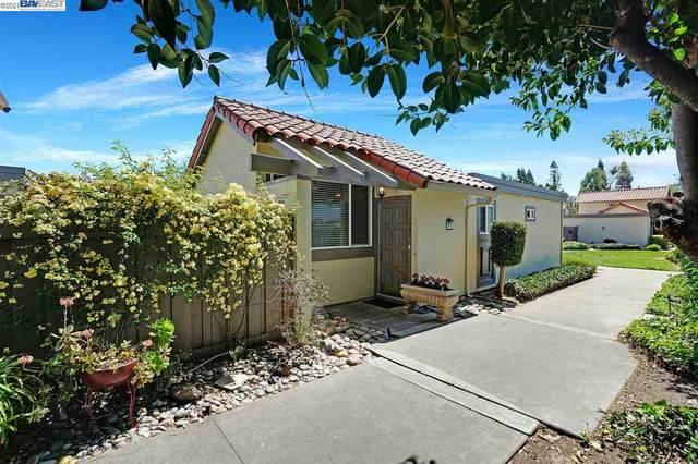 1590 Calle Enrique, Pleasanton, CA 94566 (#BE40945885) :: Intero Real Estate