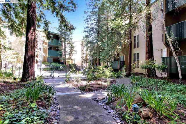 155 Sharene 317, Walnut Creek, CA 94596 (#BE40946166) :: The Kulda Real Estate Group
