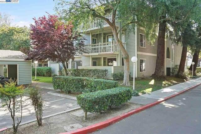 3674 Oakwood Terrace 304, Fremont, CA 94536 (MLS #BE40946670) :: Compass