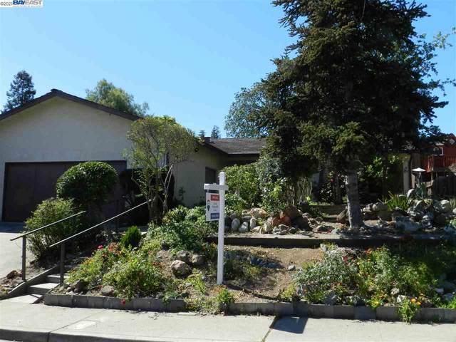 511 Mavis Dr, Pleasanton, CA 94566 (#BE40948067) :: The Goss Real Estate Group, Keller Williams Bay Area Estates
