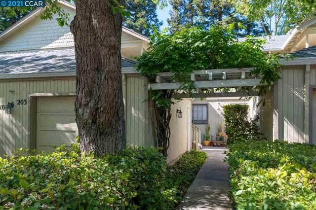 203 Kelley Ln, Danville, CA 94526 (#CC40949043) :: The Goss Real Estate Group, Keller Williams Bay Area Estates