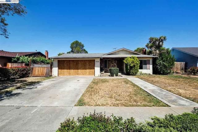 7929 Shorehaven Ave, Newark, CA 94560 (#BE40949615) :: Intero Real Estate