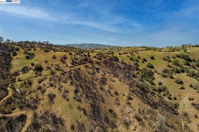 15226 W Corral Hollow Rd, Tracy, CA 95377 (#BE40951337) :: The Kulda Real Estate Group