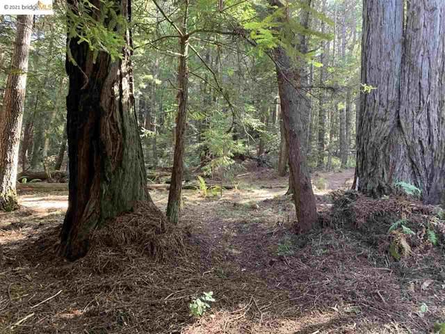 352 Pine Cone, THE SEA RANCH, CA 95497 (#EB40952292) :: Alex Brant