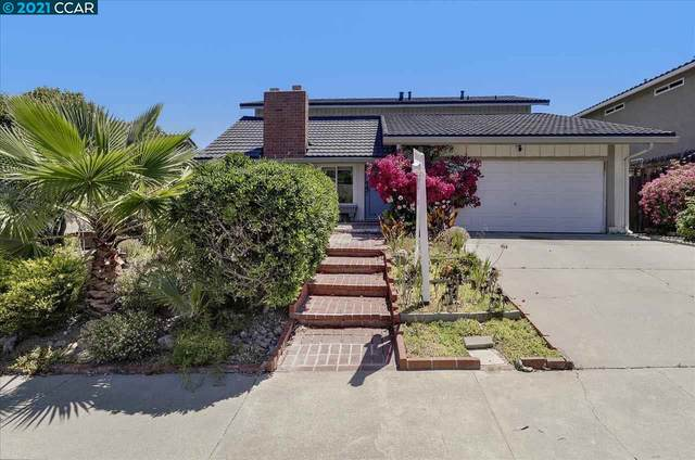 4497 Adelia Ct, Concord, CA 94521 (#CC40949801) :: Real Estate Experts