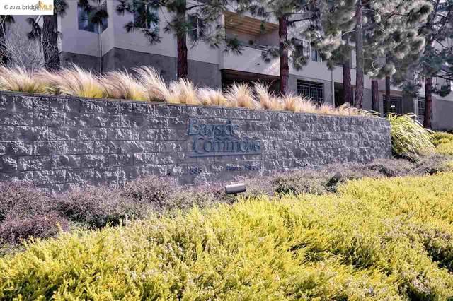 535 Pierce St 1200, Albany, CA 94706 (#EB40952523) :: Real Estate Experts
