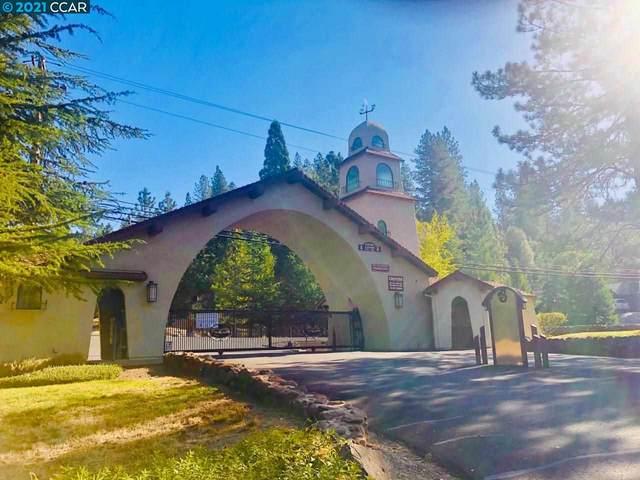 52 Escondito Circle, Camino, CA 95709 (#CC40952846) :: The Realty Society