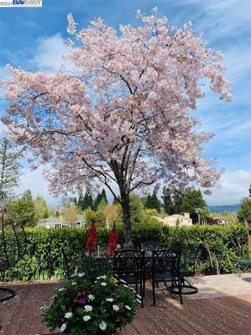 175 Cottonwood Ln, Danville, CA 94506 (#BE40953203) :: Real Estate Experts
