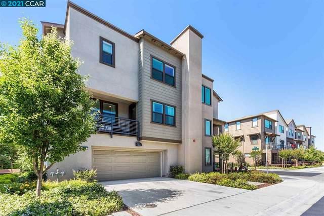 406 Morello Dr, Hayward, CA 94541 (#CC40953715) :: Real Estate Experts