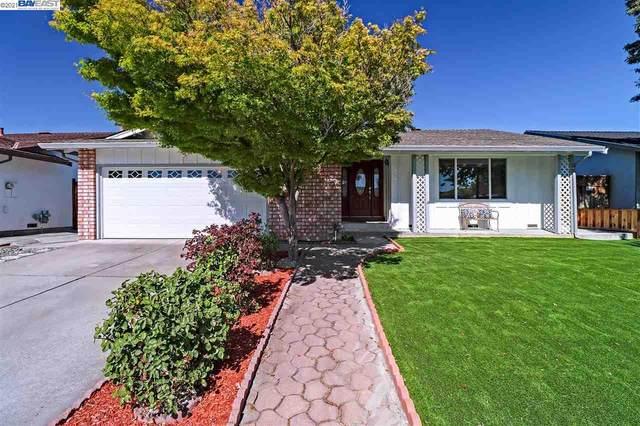 5560 Chesbro Ave, San Jose, CA 95123 (MLS #BE40954912) :: Compass