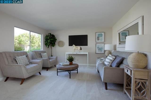 116 Arana Dr, Martinez, CA 94553 (#CC40955210) :: Strock Real Estate