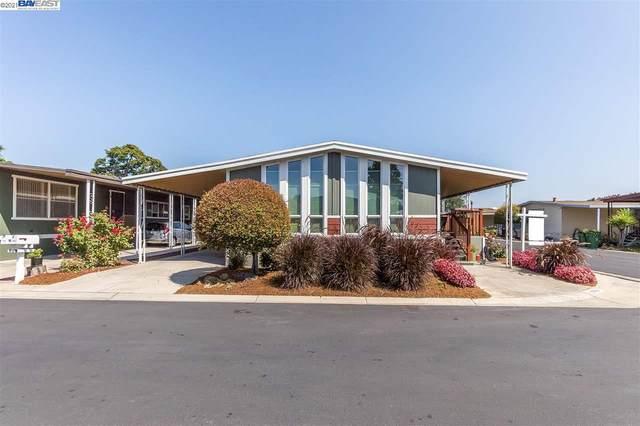 29229 Harpoon, Hayward, CA 94544 (#BE40955232) :: Schneider Estates
