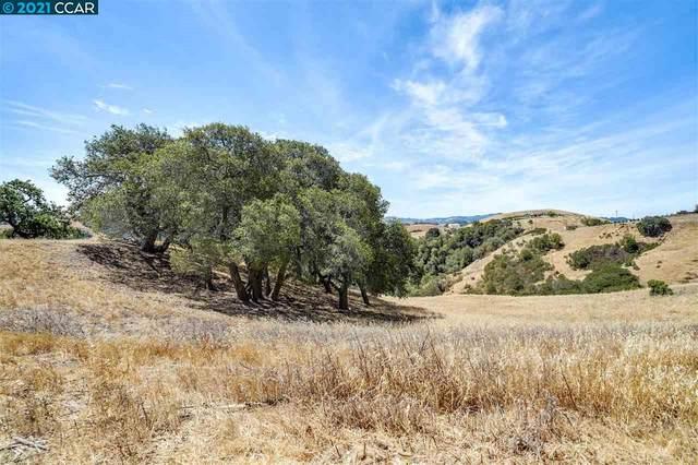 129 Rancho De La Rosa, Martinez, CA 94553 (#CC40959395) :: The Gilmartin Group