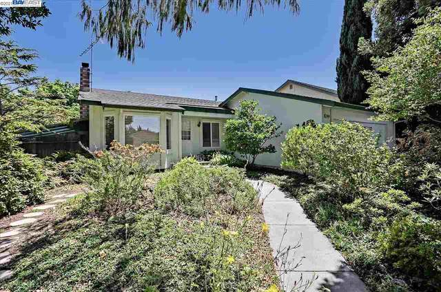3640 Warwick Rd, Fremont, CA 94555 (#BE40959797) :: Paymon Real Estate Group