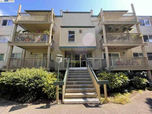 375 Mandarin Dr 306, Daly City, CA 94015 (#BE40960387) :: The Realty Society