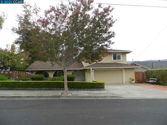 509 Del Sol Ave, Pleasanton, CA 94566 (#CC40960501) :: Robert Balina | Synergize Realty
