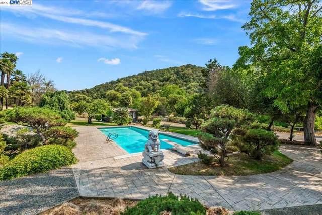 27163 Palomares Rd, Castro Valley, CA 94552 (#BE40961275) :: Strock Real Estate