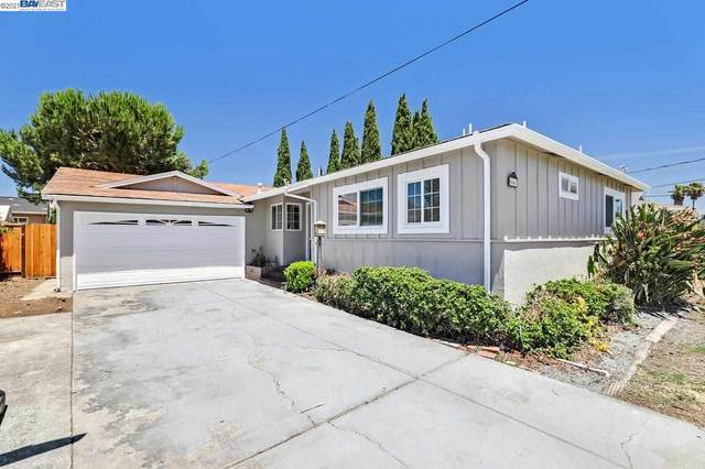 6467 Rochelle Ave, Newark, CA 94560 (#BE40961815) :: Real Estate Experts