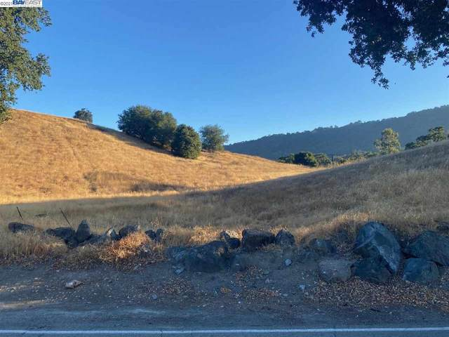 131 Happy Valley Rd, Pleasanton, CA 94566 (#BE40962218) :: Alex Brant