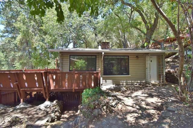 12058 Pleasant Way, Sunol, CA 94586 (#BE40963723) :: The Sean Cooper Real Estate Group