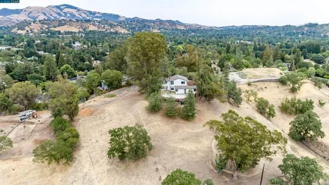 195 Vernal Dr, Alamo, CA 94507 (#CC40963951) :: The Kulda Real Estate Group