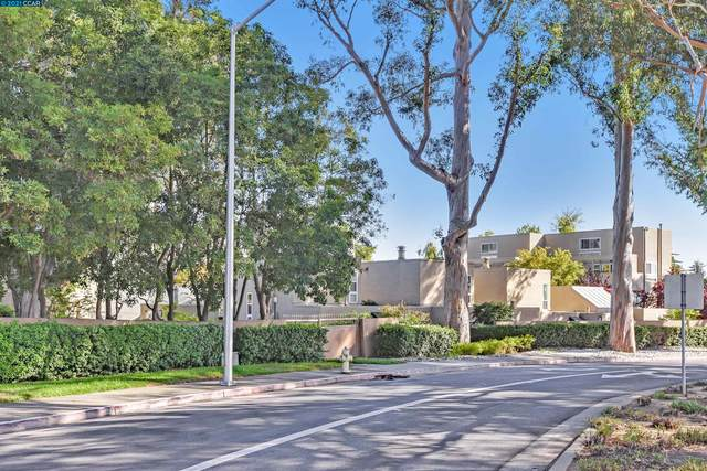 1919 Alameda De Las Pulgas Unit 3, San Mateo, CA 94403 (#CC40965748) :: The Kulda Real Estate Group