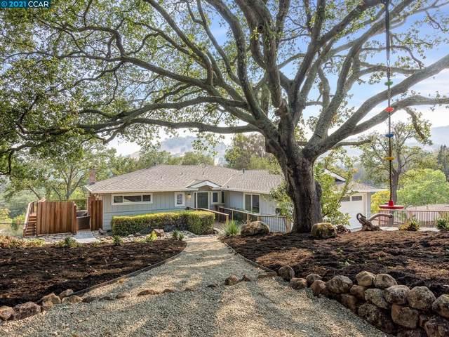 3260 Gloria Terrace, Lafayette, CA 94549 (#CC40965774) :: The Kulda Real Estate Group