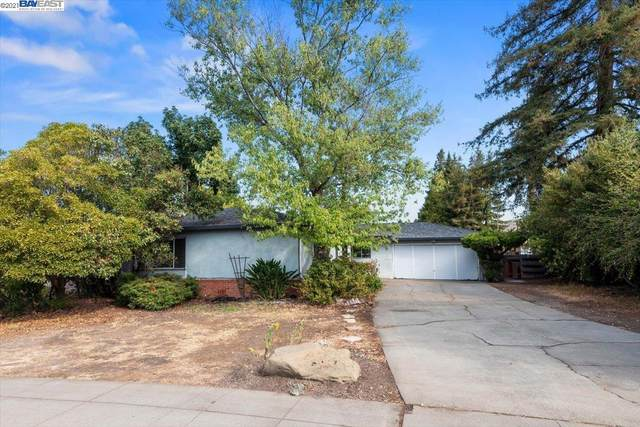 963 Plymouth Ave, Fremont, CA 94539 (#BE40966959) :: Intero Real Estate