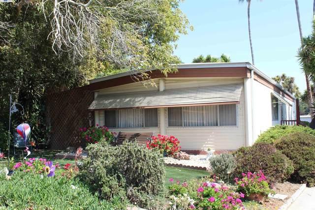 2 Palm, Union City, CA 94587 (#BE40968317) :: Paymon Real Estate Group
