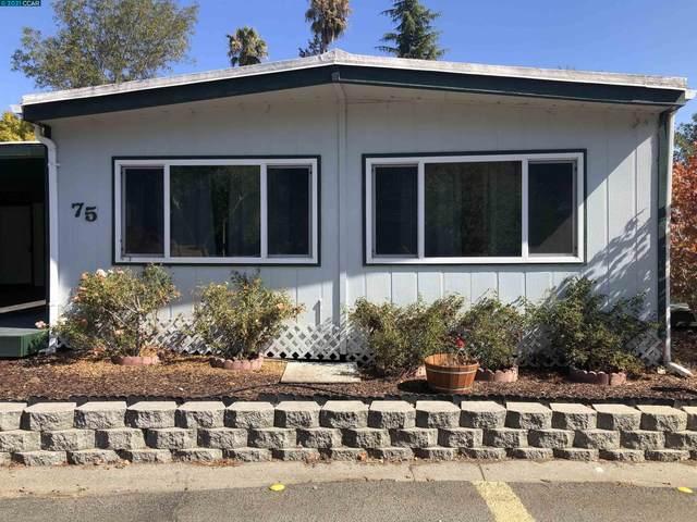 75 Sandy Drive, Vallejo, CA 94590 (#CC40968675) :: Strock Real Estate