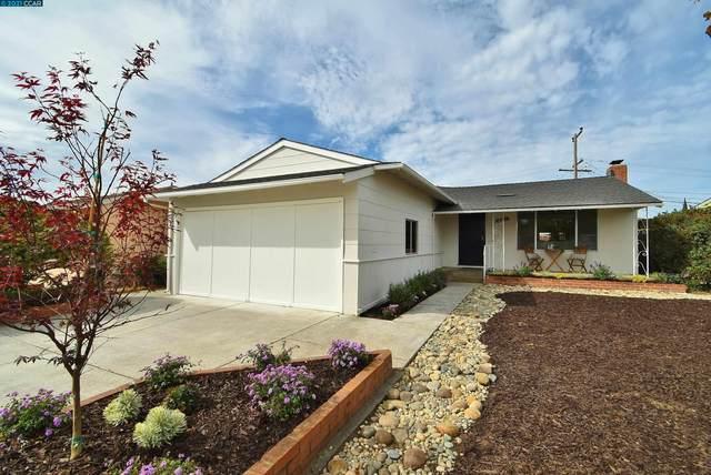 2250 Bermuda Dr, San Mateo, CA 94403 (#CC40969921) :: The Kulda Real Estate Group