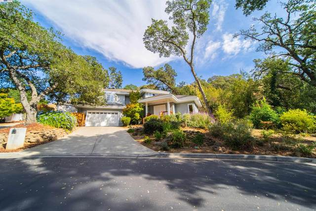 1045 Canyon Creek Ter, Fremont, CA 94536 (#BE40970080) :: The Kulda Real Estate Group