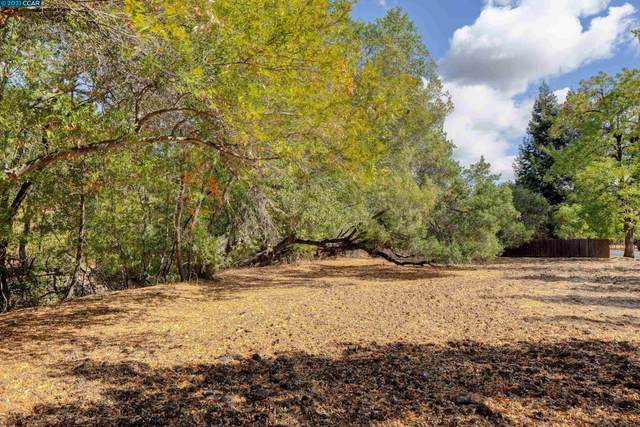000 Alhambra Valley Road, Martinez, CA 94553 (#CC40971679) :: The Sean Cooper Real Estate Group