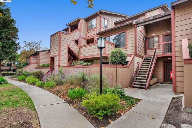 219 E Warren Cmn, Fremont, CA 94539 (#BE40971863) :: Intero Real Estate