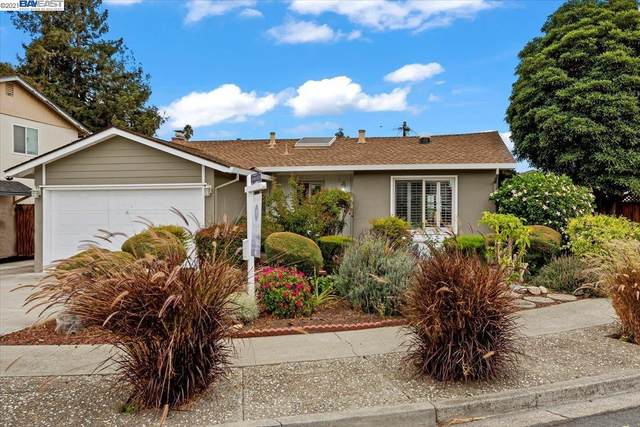 4436 Amador Rd, Fremont, CA 94538 (#BE40971952) :: Robert Balina | Synergize Realty