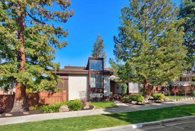 419 Avenue Del Ora, Redwood City, CA 94062 (#ML81698693) :: Strock Real Estate
