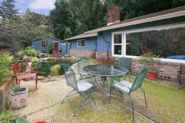 10795 Empire Grade, Santa Cruz, CA 95060 (#ML81699575) :: The Dale Warfel Real Estate Network