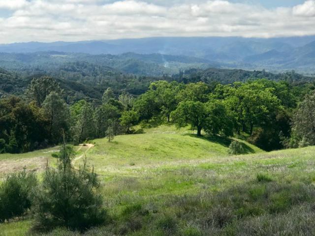 74130 Copperhead, Bradley, CA 93426 (#ML81701284) :: The Goss Real Estate Group, Keller Williams Bay Area Estates