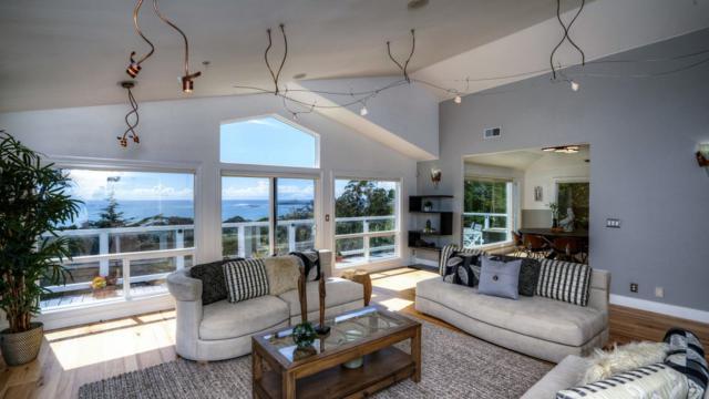 630 Miramar Dr, Half Moon Bay, CA 94019 (#ML81701652) :: The Kulda Real Estate Group