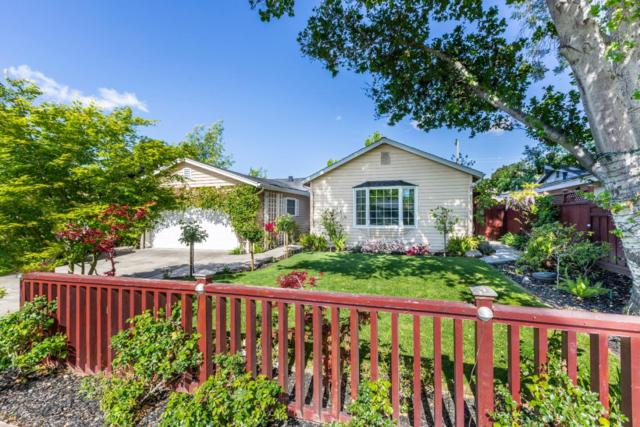 218 Jo Dr, Los Gatos, CA 95032 (#ML81701748) :: von Kaenel Real Estate Group