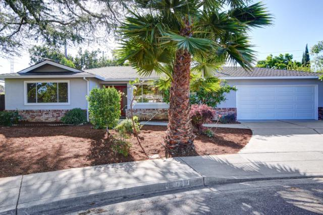 87 Patricia Ct, Mountain View, CA 94041 (#ML81701753) :: Brett Jennings Real Estate Experts