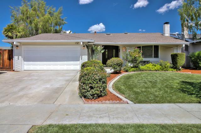 5826 Paddon Cir, San Jose, CA 95123 (#ML81701791) :: Astute Realty Inc
