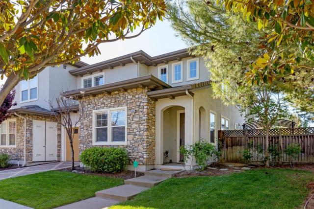 1346 Trailside Ln, San Jose, CA 95138 (#ML81701890) :: The Gilmartin Group