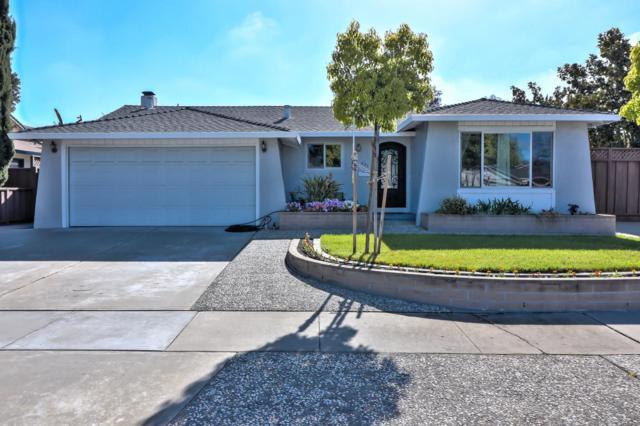 521 Safari Dr, San Jose, CA 95123 (#ML81702019) :: The Goss Real Estate Group, Keller Williams Bay Area Estates