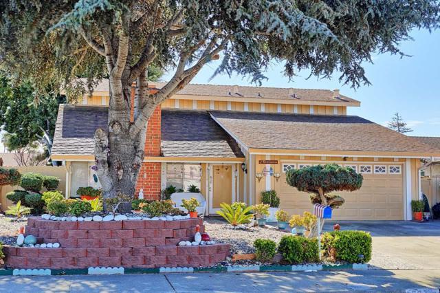 3314 San Pedro Ct, Union City, CA 94587 (#ML81702392) :: Intero Real Estate